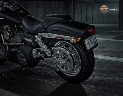 Morgan Silk, Harley Davidson 1