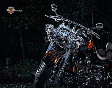 Morgan Silk, Harley Davidson 2